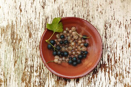 chabby: ceramic plate with black and white currants