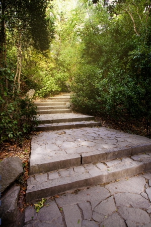 stone fotpath with staircase between the autumn woods in Vorontsovsky park in Alupka, Crimea