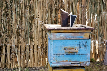 Old fashioned weathered blue wooden bee hive with bee-keeper tools in rustic background