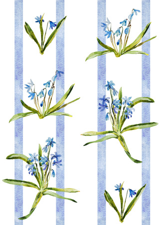 thee: Watercolor blue flowers scilla pattern retro wallpaper with stripes