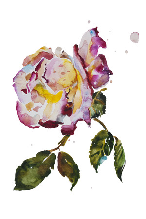 Cream and purple rose with leaves with grunge spots original watercolor art