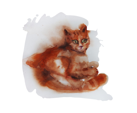 watercolour painting: Red cat sitting  original wet watercolor illustration on white background