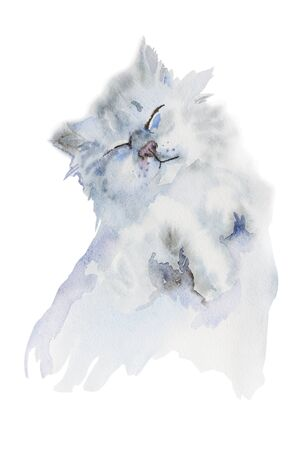 painted face: Happy grey fluffy cat sleeping original watercolor isolated on white background