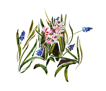 Floral pattern from muscari and hyacinth plants growing on the ground, original watercolor illustration isolated on white background Stock Photo