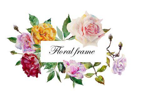 Le rose dell'acquerello sbocciano una cornice rettangolare da fiori rosa, rossi, viola e gialli e foglie di piante su sfondo bianco