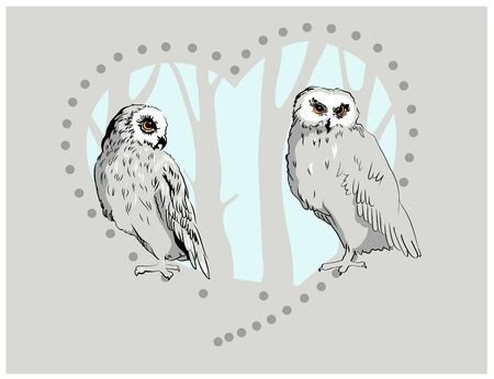 two black and white owls in the wood with heart shape in sketch hand drawn style, Valentine day postcard