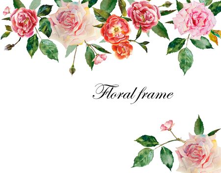 Watercolor roses header and corner element for text from pink, white flowers with leaves and buds original illustration isolated on white background