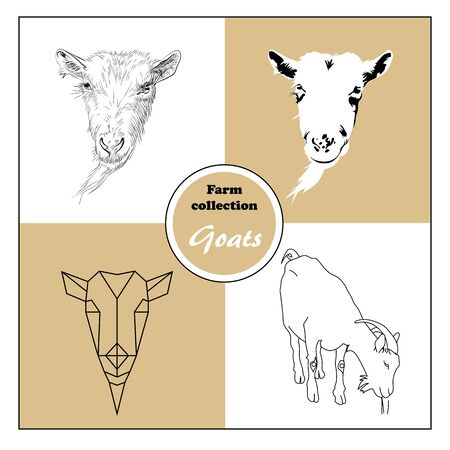 original hand drawn goats heads animal farm collection in different styles, sketch, outline, geonetric and solid shape Illustration