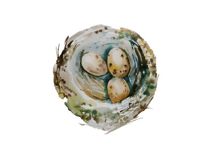 Three spotted eggs in the nest isolated on white background. Watercolor illustration of wild bird nest with small eggs