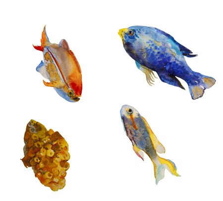 Set of watercolor tropic fish and a coral isolated on white 스톡 콘텐츠