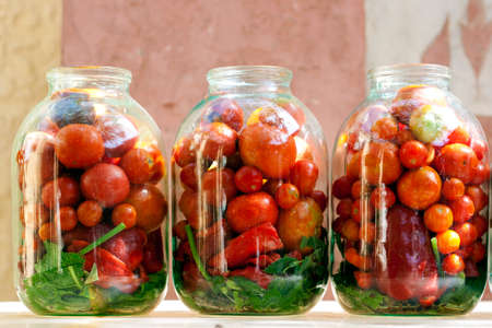 Three jars with ripe red tomatoes with herbs ready to pickle making, standing outdoor on the summer sun. Stock Photo