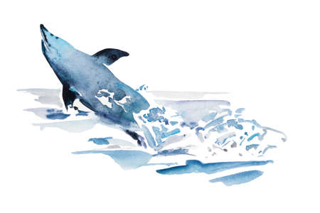 Playfull watercolor blue dolphin jump from the water in the splash of foam. Original illustration of sea animal, isolated on white background