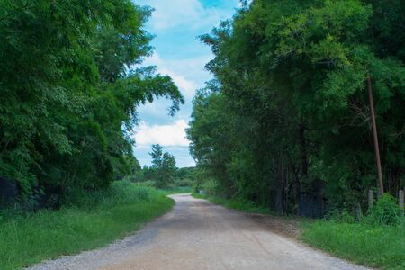 rough road: Rough road with green tree and blue sky view