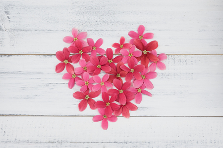 Heart made from pink and red flowers on white wood background Stock Photo