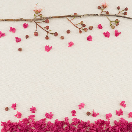 love blow: Pink crape myrtle flowers with branch and falling petals on the ground