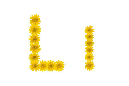 Letter L, alphabet made from yellow Wedelia flowers isolated on white background
