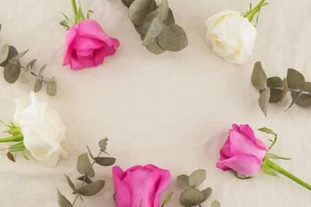 Pink, white roses and dry baby eucalyptus leaves on white muslin fabric with copy space in the center Stock Photo