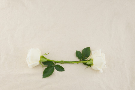 White roses wreath on white muslin fabric with copy space