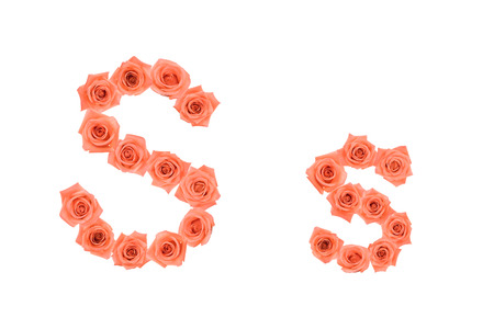 Letter S, alphabet made from orange roses isolated on white background