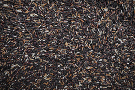 south east asia: South - East Asia Rice Background Stock Photo