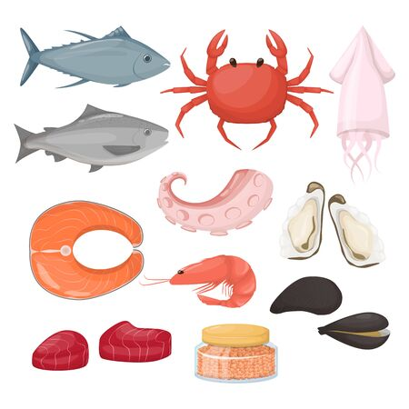 Set of fish and food sea product.