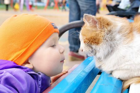 a 3 year old boy looking at a sleeping cat