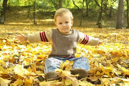 little boy sitting on yellow autumn leaves                               Stock Photo
