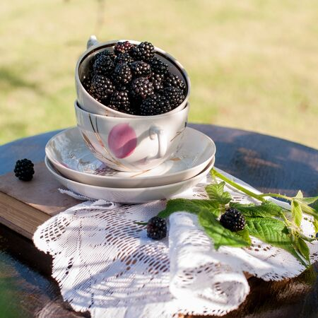 fresh ripe blackberries in a porcelain cup on vintage background