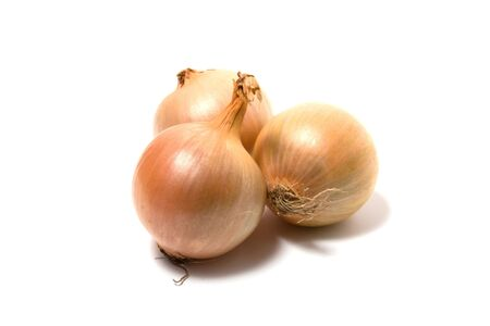 Onion isolated on white close up photo