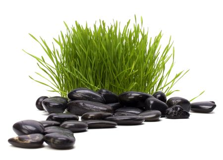 spiritual growth: grass and stones isolated on white background