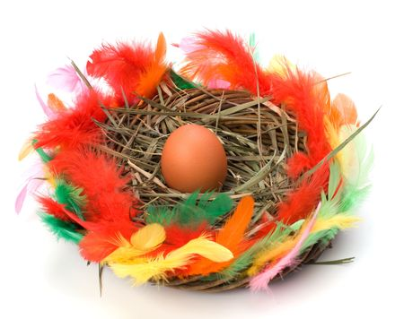 easter egg in nest isolated on white background photo