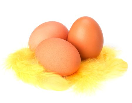 Eggs and feather isolated on white background. Easter decor. Stock Photo - 6258711