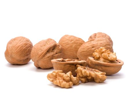 Circassian walnut isolated on white background Stock Photo - 6491661