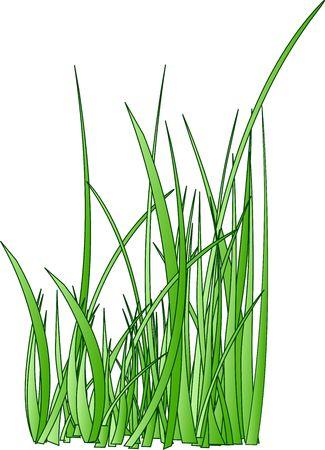 raster. stylized grass silhouette Stock Photo - 6573075