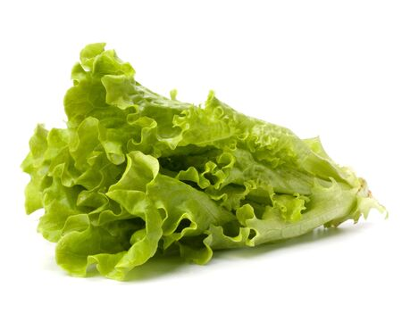 Lettuce salad isolated on white background Stock Photo - 6747794