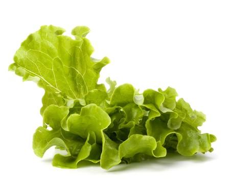 Lettuce salad isolated on white background Stock Photo - 7154742