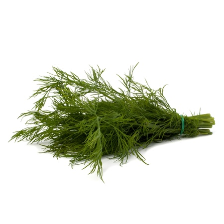 fascicle: dill isolated on white background