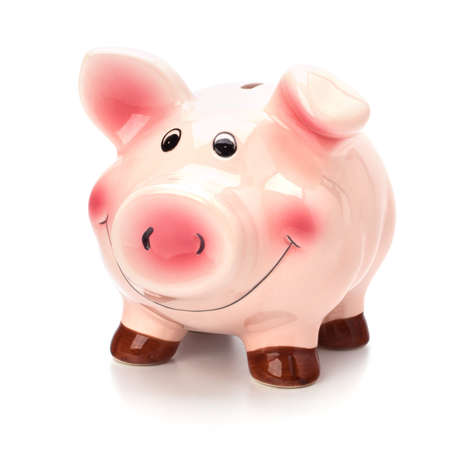 Lucky piggy bank isolated on white background Stock Photo - 8281651