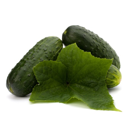 cucumber isolated on white background close up Stock Photo - 8285296