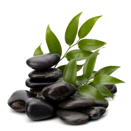 meditation isolated white: Tranquil scene. Green leaf and stones isolated on white background.