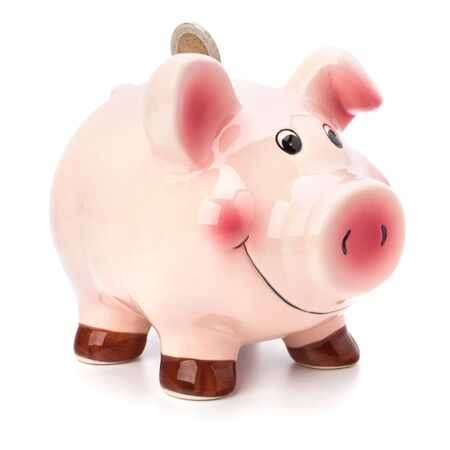 Business concept. Lucky piggy bank isolated on white background. Stock Photo - 8385737