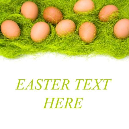 eggs border isolated on white background photo