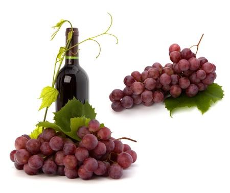 red wine bottle isolated on white background Stock Photo - 9053778