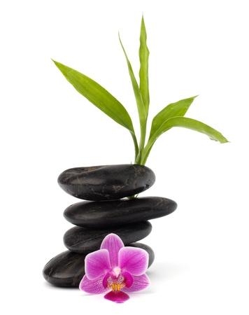 bambu: Equilibrio de guijarros de Zen. Concepto de spa y cuidado de la salud. Foto de archivo