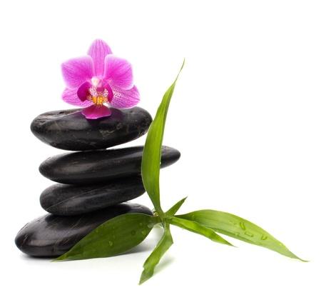 orchidee: Zen ciottoli equilibrio. Spa e il concetto di assistenza sanitaria. Archivio Fotografico