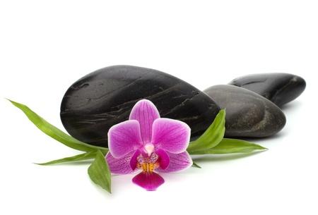 Zen pebbles path. Spa and healthcare concept. Stock Photo - 9054331