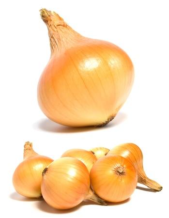 onion isolated: cebolla aislada sobre fondo blanco