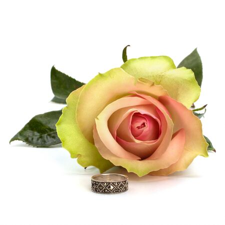 Beautiful rose with wedding ring  isolated on white background photo