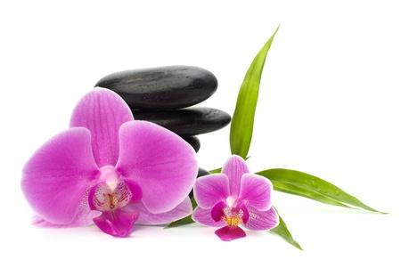 bambu: Zen guijarros equilibrio. Concepto de spa y cuidado de la salud.