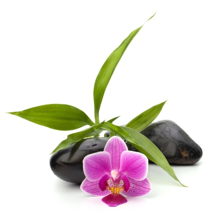 Spa and healthcare concept. Orchid and stones. photo